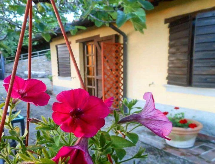 Ingresso della camera e giardino
